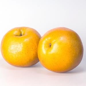 Japan Pear